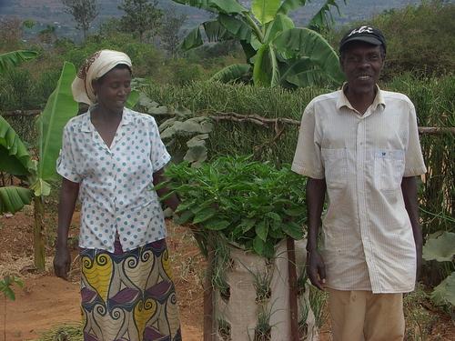 African_Gardens_Ethiopia_bag_garden