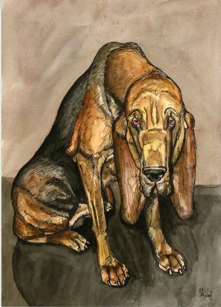 Ellejwbloodhound