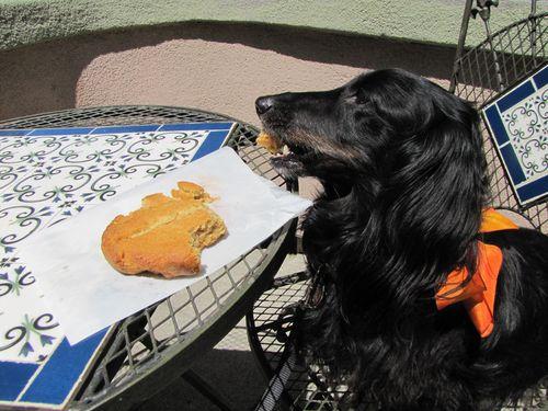 Ernie cookie