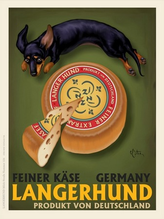 Imagekind langerhund
