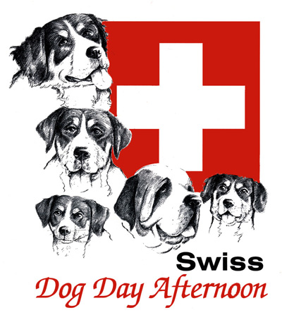 Swiss dog day afternoon