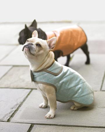 Martha stewart coat