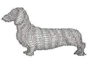 Danielles-dog