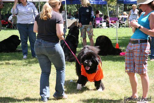 2011-06-18 Tshirt contest Chloe
