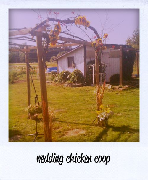 2011-08-06 Seattle Wedding Coop