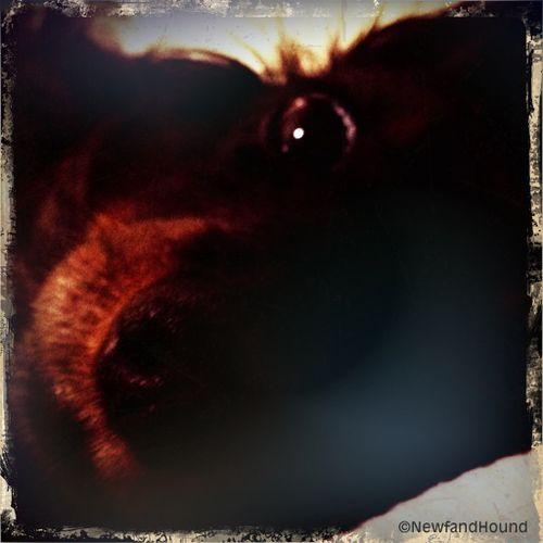 2012-03-16 Nooner Love 1