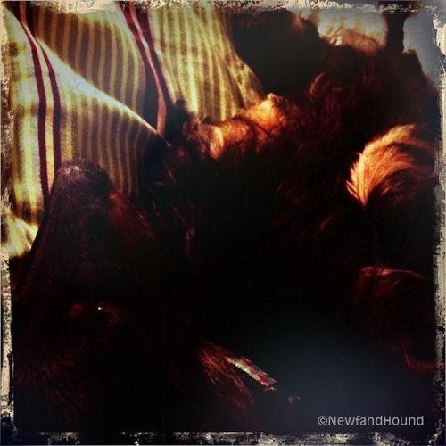 2012-03-16 Nooner Love 3