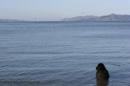 2012-03-04 GG Beach 1
