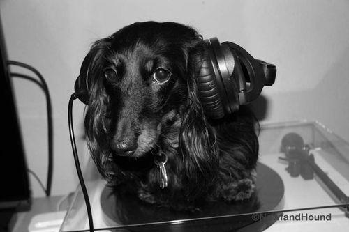 2012-06-14 DJ Barksalot 16